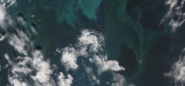 De Golfstroom, de Atlantische warmtepomp, sputtert