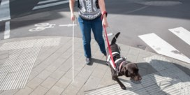 Mensen met handicap krijgen plaats in grondwet