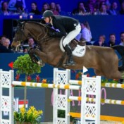 Virus legt paardensport lam