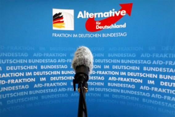 Duitse inlichtingendienst beschouwt AfD als verdachte organisatie