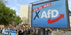 Alternative für Deutschland is een 'verdachte extreemrechtse organisatie'