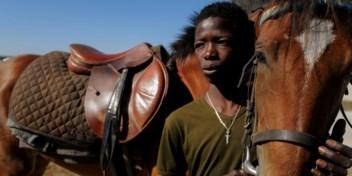 Beeldverhaal | Fallou Diop, een beloftevolle jockey uit Senegal