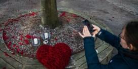 Geweldpleger met bijl in Zweden vermoedelijk geen terrorist