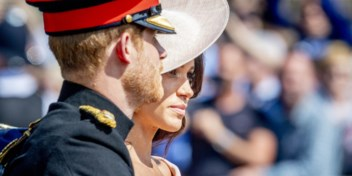 Harry en Meghan tegen 'The Firm'