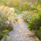 Buitenbubbel mag door huis passeren naar tuin of terras
