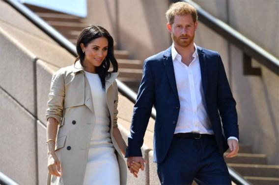 Wat zijn de plannen van Harry en Meghan op professioneel vlak?