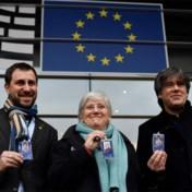 Vlaamse Europarlementsleden steunen opheffing immuniteit Puigdemont niet