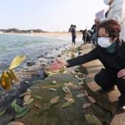 Wat te doen met het vervuilde water van Fukushima?