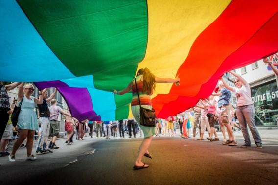 School zonder homofobie zou ook macho's ten goede komen