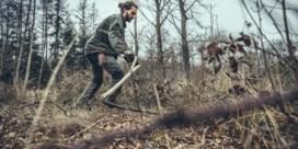 Duizend bramen en netels: wat stikstof doet met natuurgebied