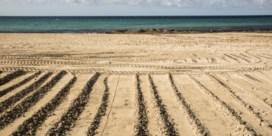 Alleen Duitse handdoeken op het strand van Mallorca