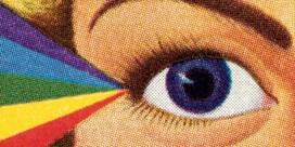 Vele genen kleuren de ogen