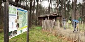 Wolf bijt vier damherten dood in Limburg
