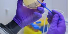 Vlaams Instituut voor Biotechnologie slachtoffer van cyberaanval