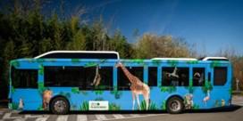 Nieuwe shuttlebus van Planckendael rijdt op CNG