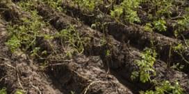Grondwaterwinning afgeketst wegens mogelijke schade aan natuur