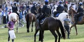 Is het wel een goed idee om politiepaarden in te zetten bij ontruimingen?