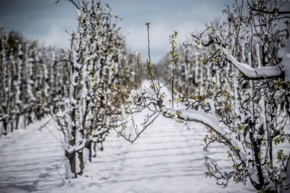 Onweer en sneeuw samen, hoe zeldzaam is dat?