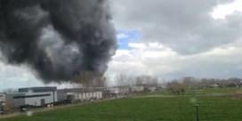 Zware brand verwoest hangaar van tuinbouwbedrijf in Knokke-Heist