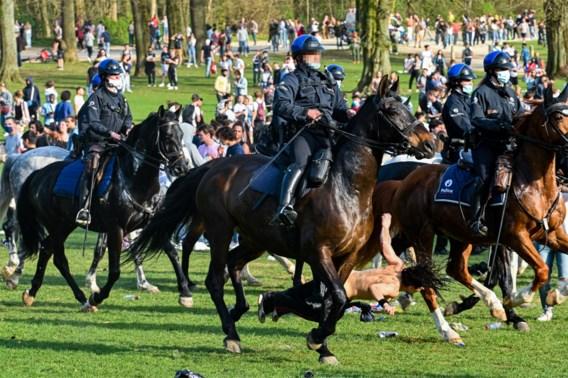 Vrouw die op La Boum omver werd gelopen door politiepaard in Ter Kamerenbos: 'Ik was meteen knock-out'