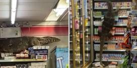 Varaan zet Thaise supermarkt op stelten