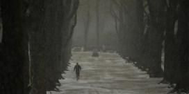 Weerbericht | Koud en mogelijk smeltende sneeuw
