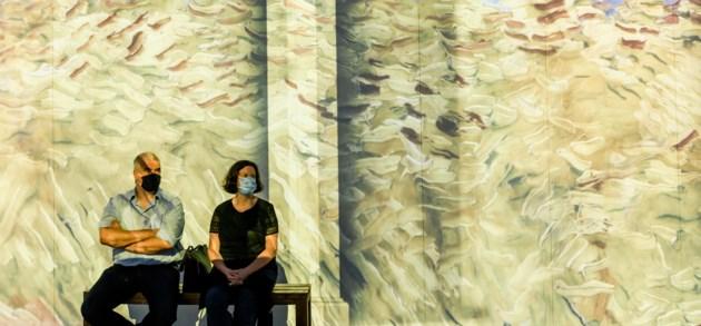 Van Klimt tot Van Gogh: zeg niet 'expo', zeg 'onderdompeling'