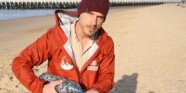 In uur tijd meer dan 2.700 'nurdles' gevonden op het strand