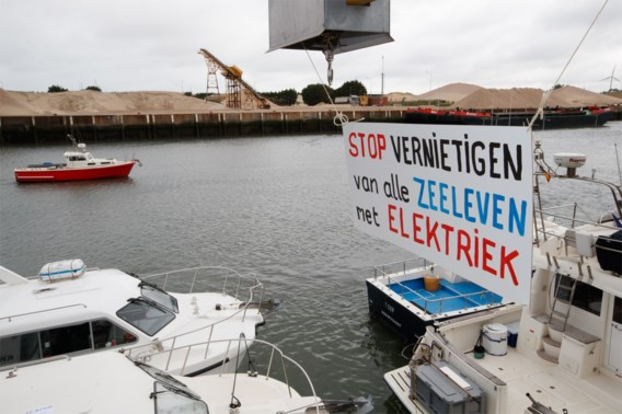 Europees Hof verwerpt Nederlands beroep tegen pulsvisverbod