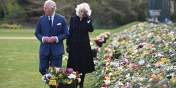 De diep verdeelde royals, een bron van eenheid in een gespleten land