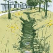 Wat een wadi voor uw tuin kan betekenen