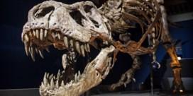 2,5 miljard T. rexen stampten over de aarde
