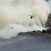 Evacuaties bij hevige brand op Tafelberg in Kaapstad