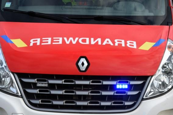 85-jarige vrouw komt om bij woningbrand in Antwerpen