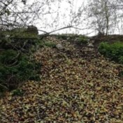 Vier ton rottende peren gedumpt in Limburgs natuurgebied