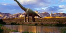 Hoe konden sommige dinosauriërs zo massief groot worden?