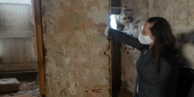 Nieuwe muurschilderingen ontdekt in kasteel van Rode Ridder