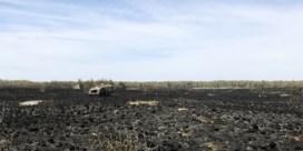Luchtbeelden tonen ramp na brand in Brecht