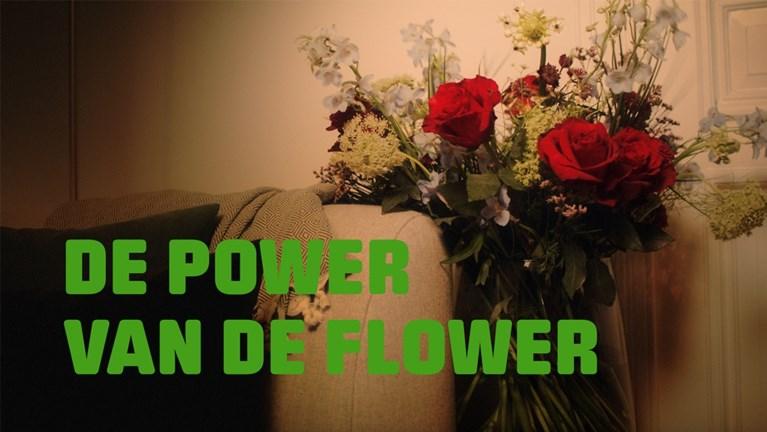 """""""Bloemen zorgen voor langdurig genot"""""""