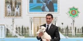 Turkmenistan, waar een hond een nationale feestdag krijgt