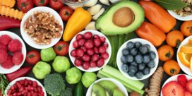 Hoge Gezondheidsraad: 'Plantaardig dieet heeft veel voordelen, maar variatie is belangrijk'
