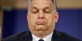 Viktor Orban 'bouwt parallelle staat uit'