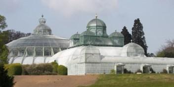 Koninklijke serres gaan deels open voor publiek