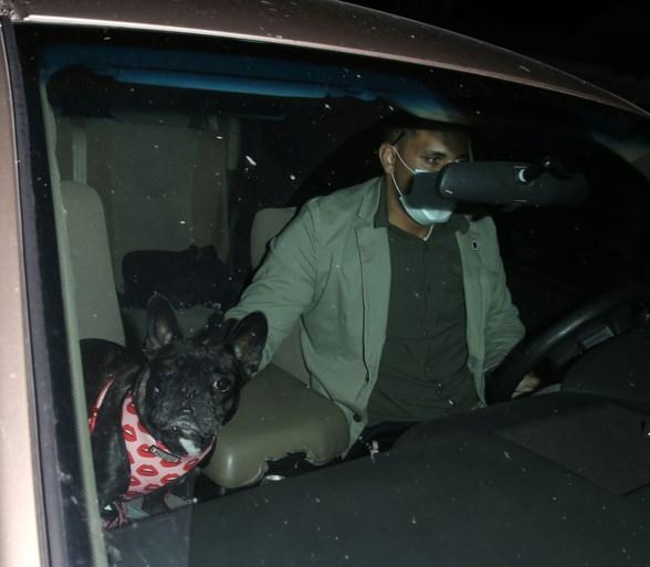 Ontvoerders van Lady Gaga's honden en vrouw die hen 'vond' gearresteerd