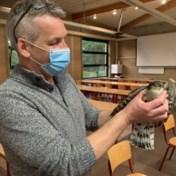 Koelbloedig gemeenteraadslid Nijlen vangt roofvogel die vergadering binnenvloog