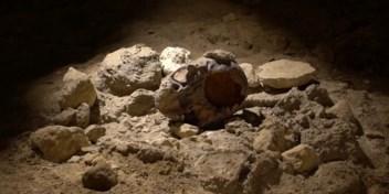 Bijzondere ontdekking van resten van negen neanderthalers