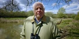 Attenborough: 'De problemen die ons te wachten staan zijn veel groter dan de coronapandemie'