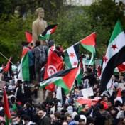 Duizenden pro-Palestijnse betogers in Brussel, Parijs en vele andere steden