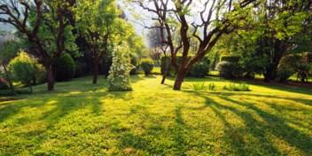 De bodem, een gratis airco in de tuin