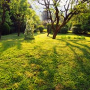 Een gratis airco in de tuin